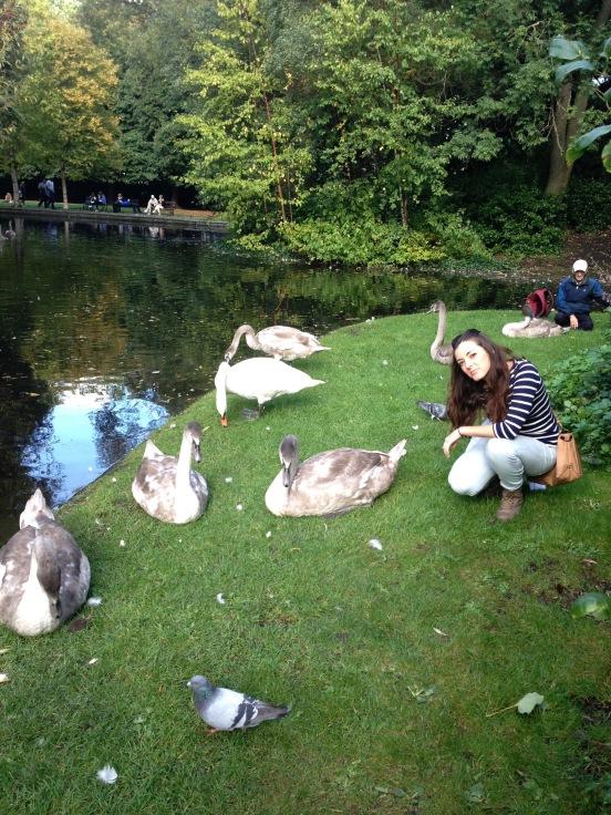 estanque de cisnes en Saint Stephen Green