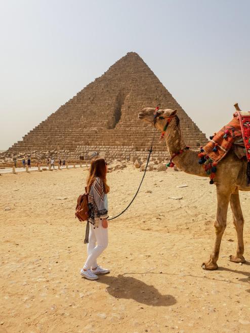 egipto-piramides-camello